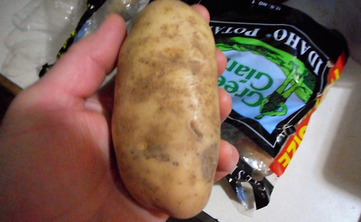 This is an Idaho Russet potato