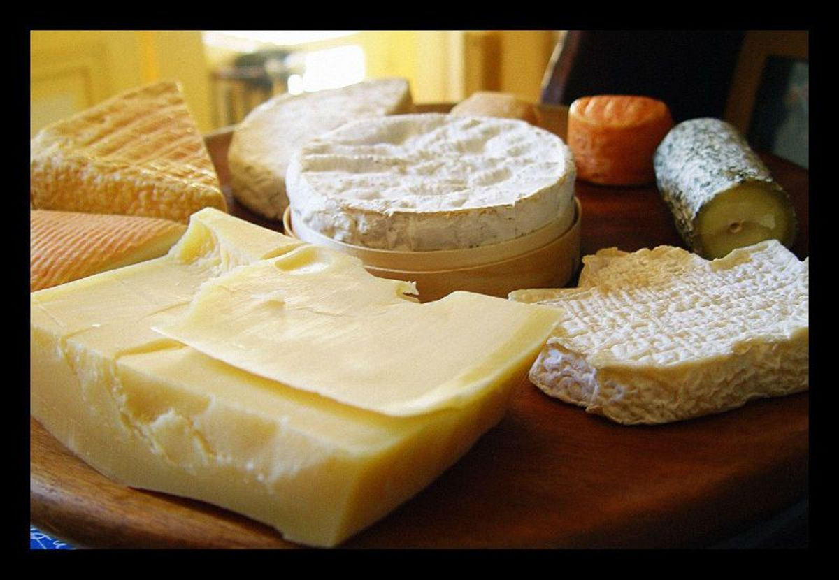 cheese-glorious-cheese