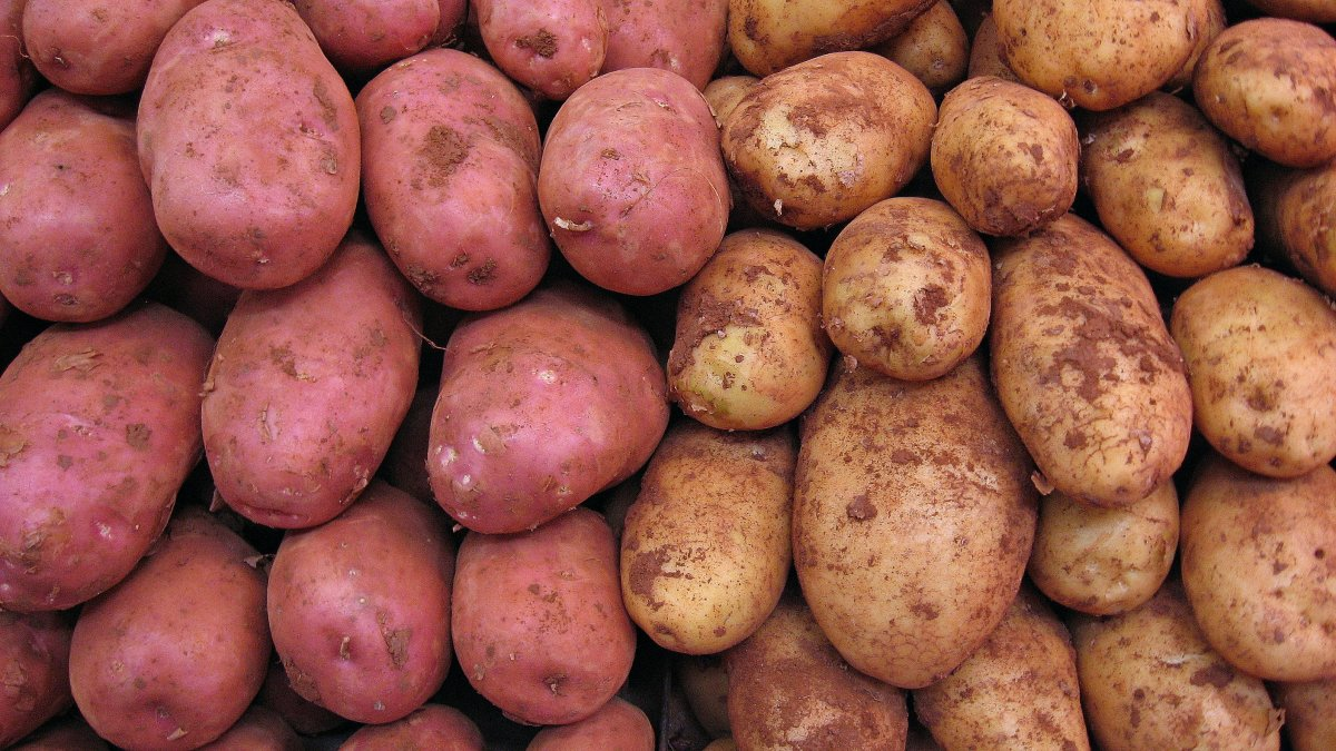What's not to love about potatoes?