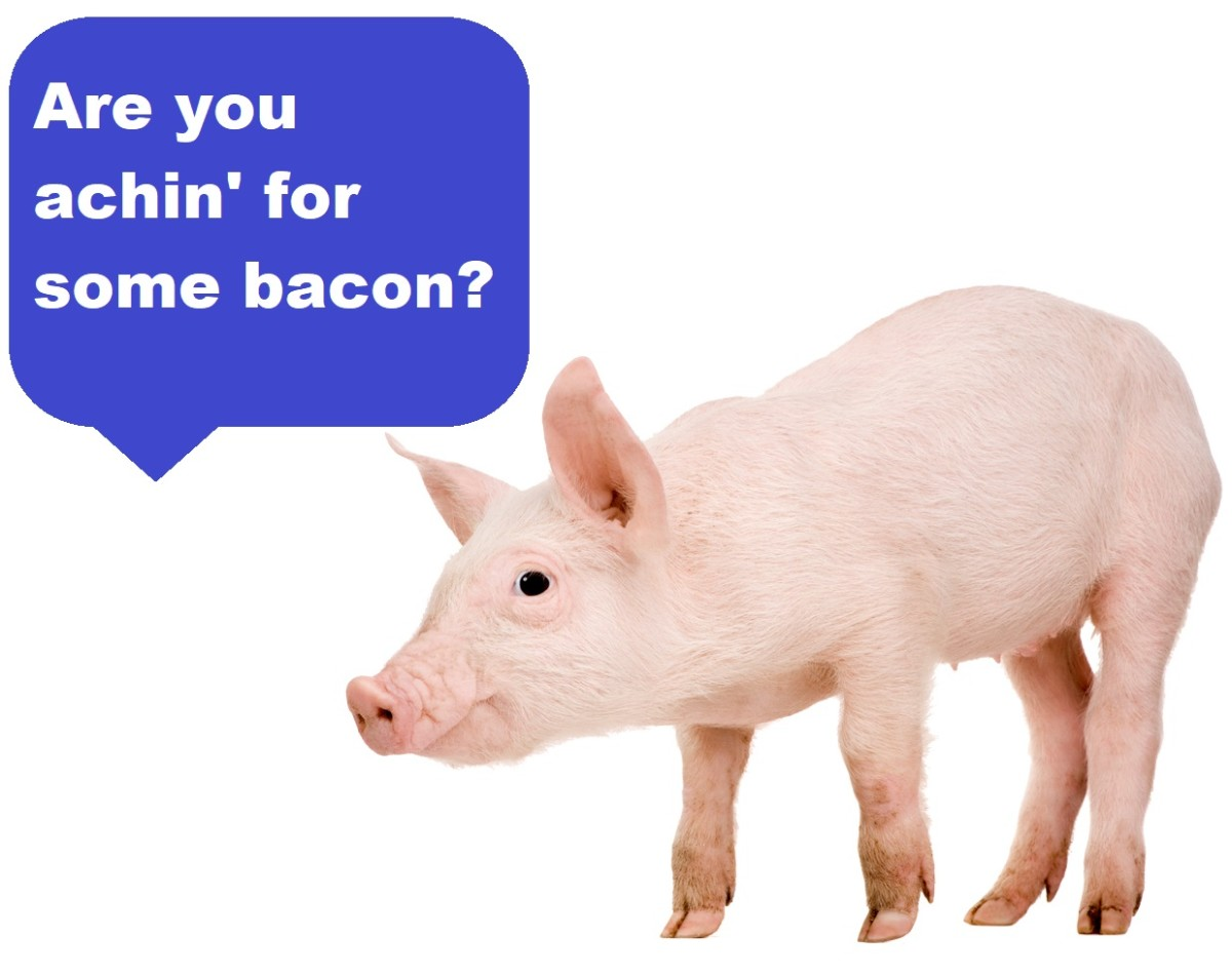 How to Pick the Best Bacon & Pork Chops