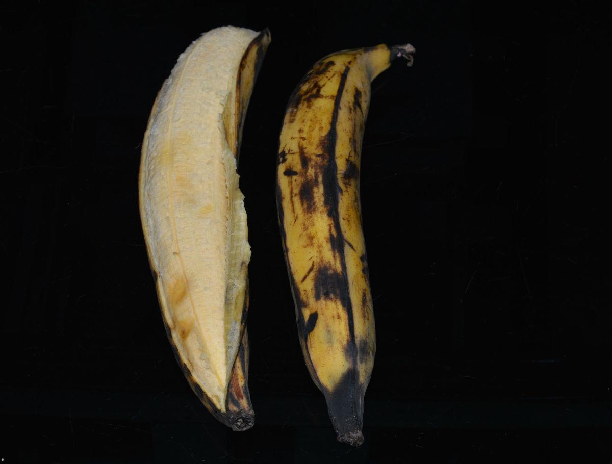 Ripe Nendra Banana