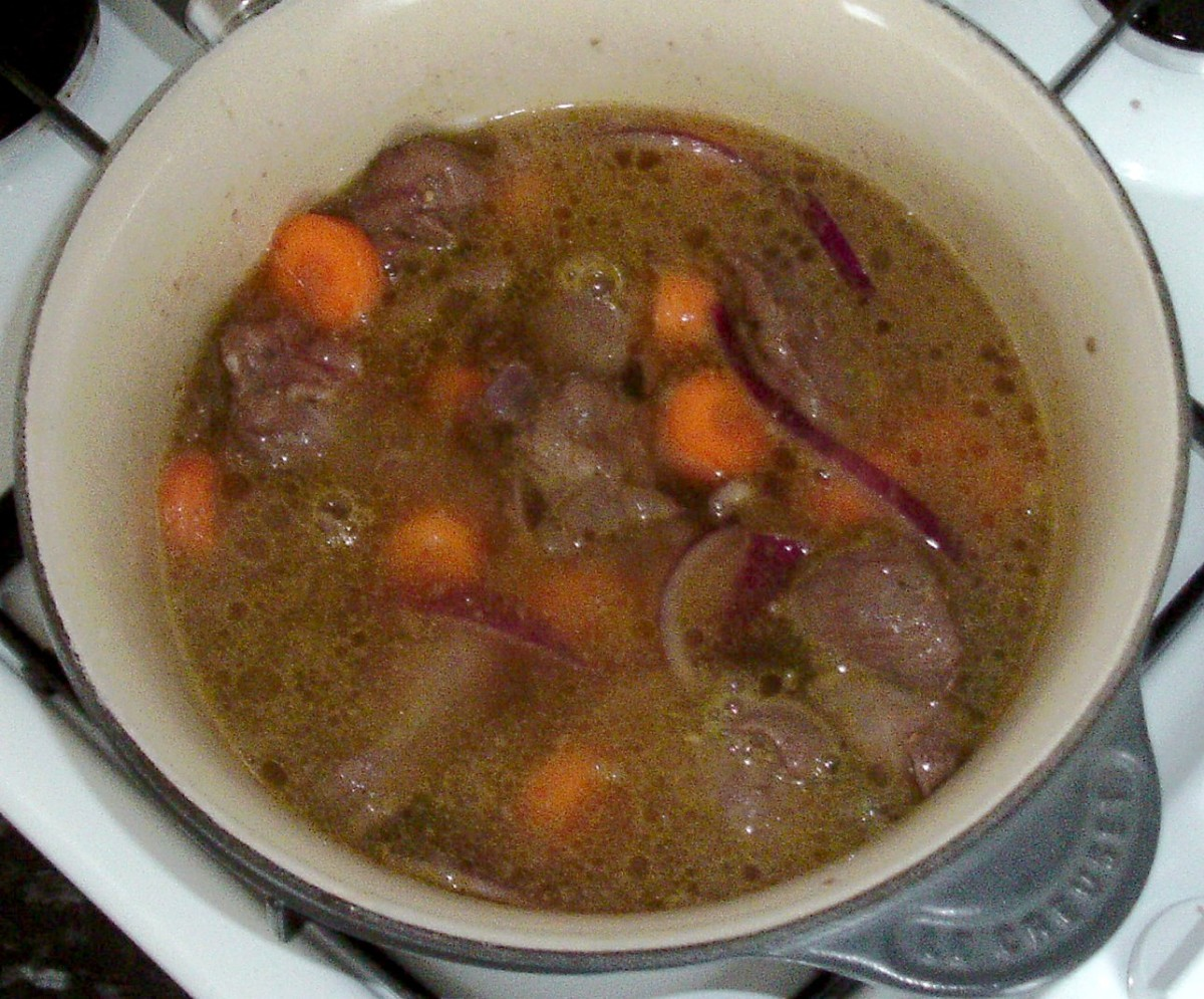 Alpaca and stock is brought to a gentle simmer