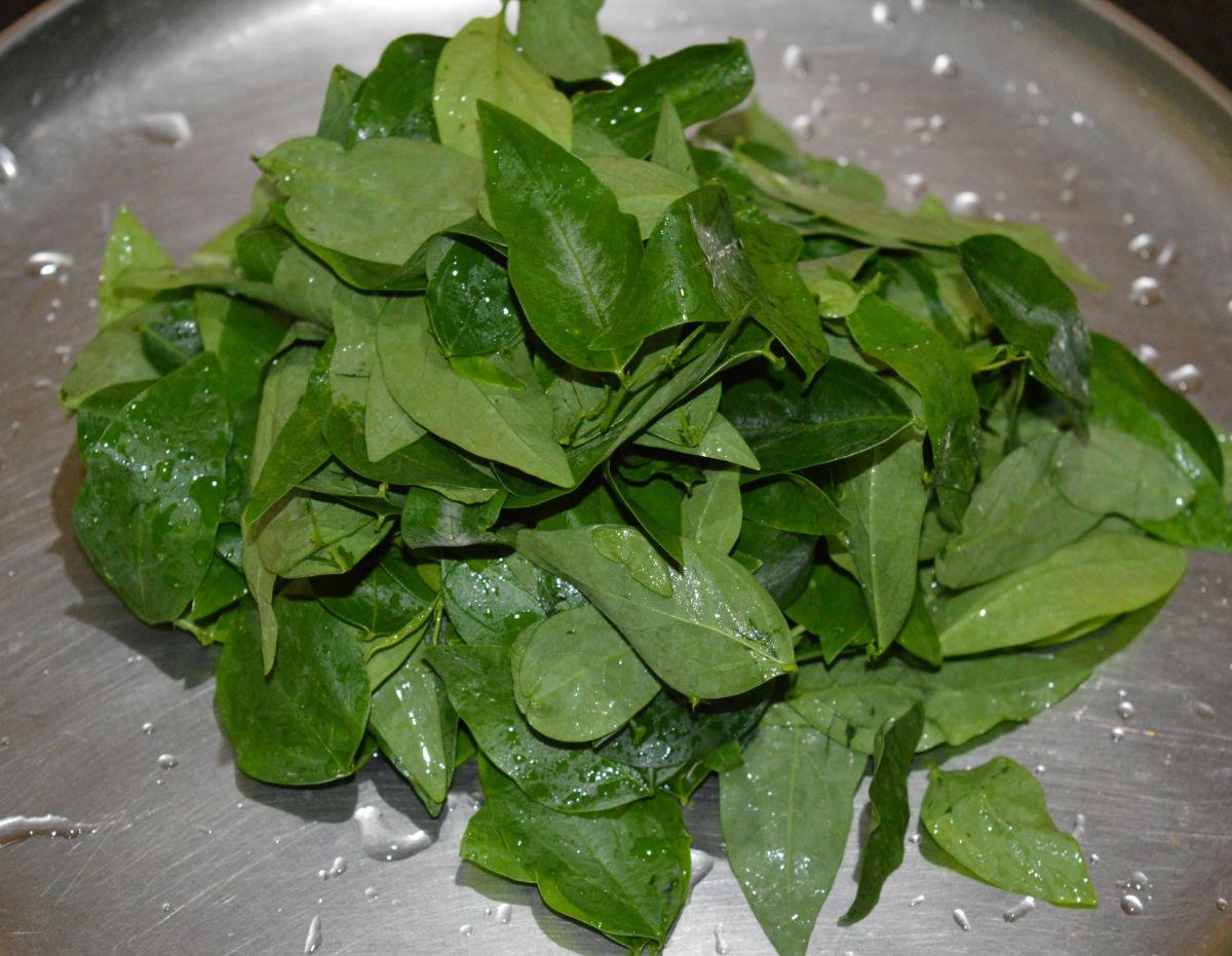 washing leafy greens