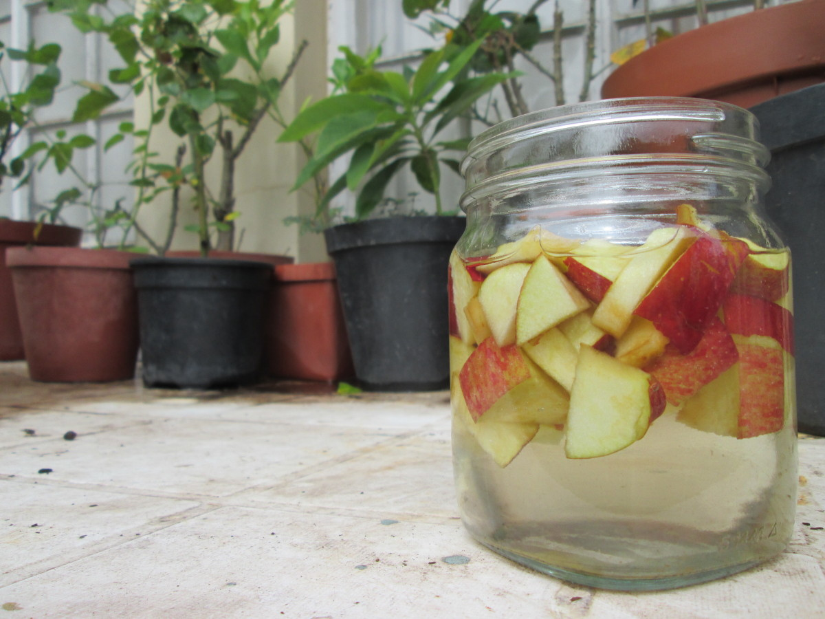 Cut the apples into big enough pieces so that they don't become a mushy mess.