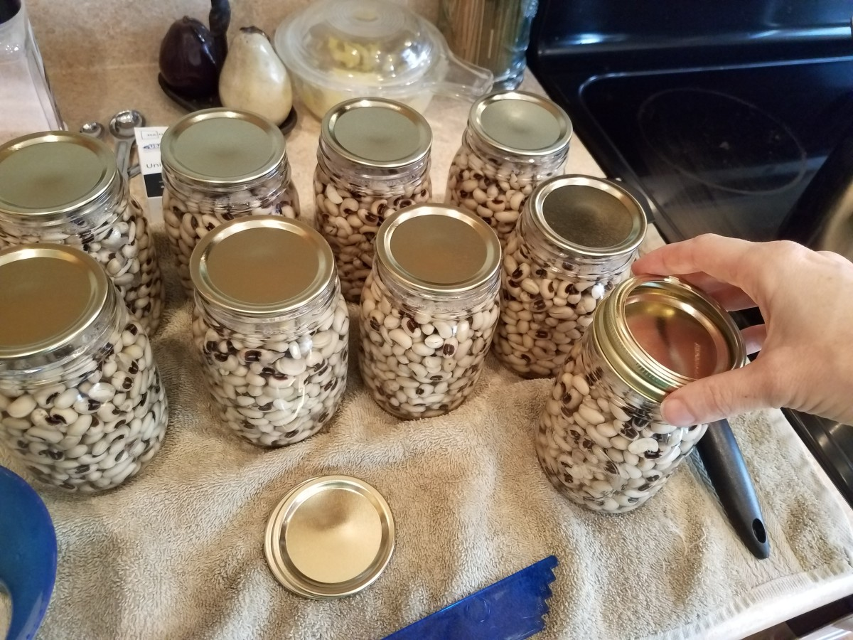 Step Thirteen: Add rings to each jar tightening only until you feel the slightest bit of resistance.