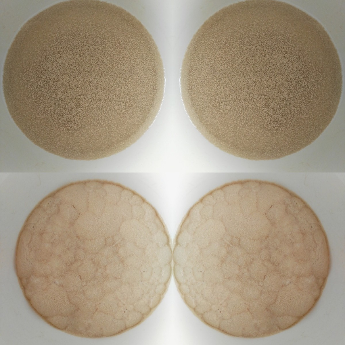 Top image: Yeast sprinkled onto warm milk Bottom image: Yeast after 10 mins