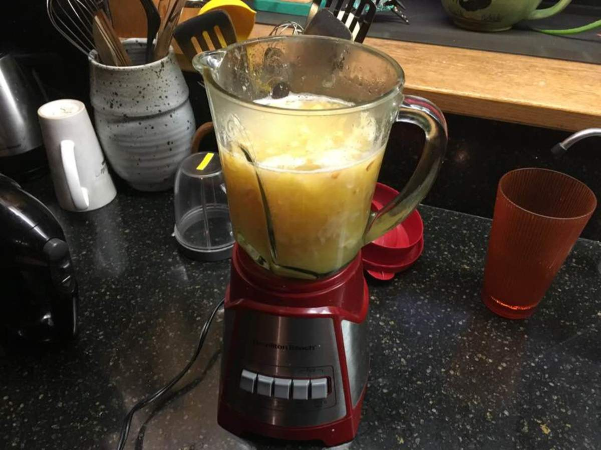 Step 3: Place the fruit and its juice into a blender or whatever blending device is available, add in the 1 cup shredded coconut, and blend to a fine purée