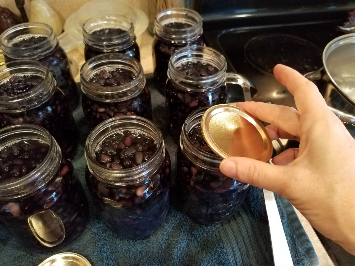 Add a clean lid to each jar.