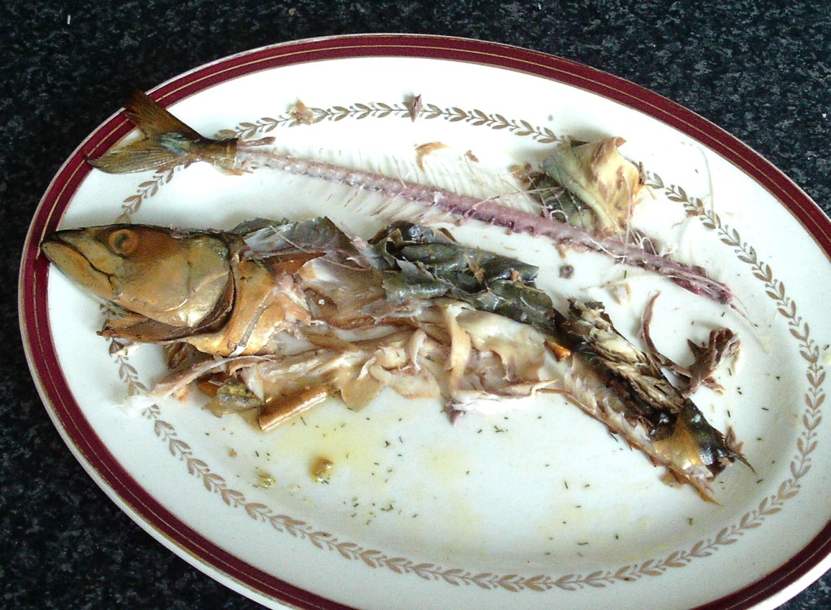 Cleaned mackerel skeleton and carcass
