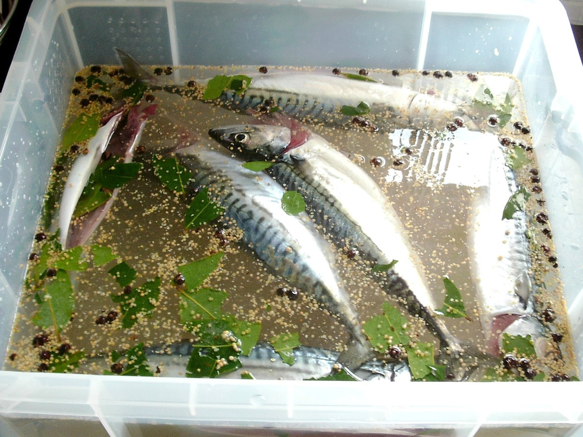 Prepared mackerel are added to the brining solution