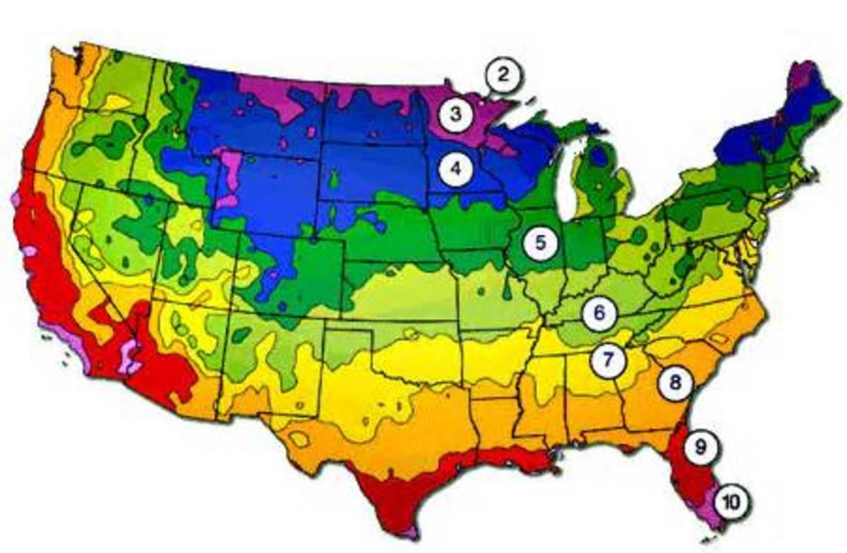 Map of USDA Hardiness Zones