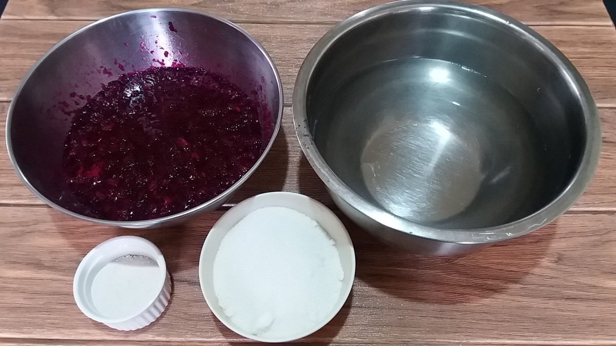 ingredients for pitahaya jelly