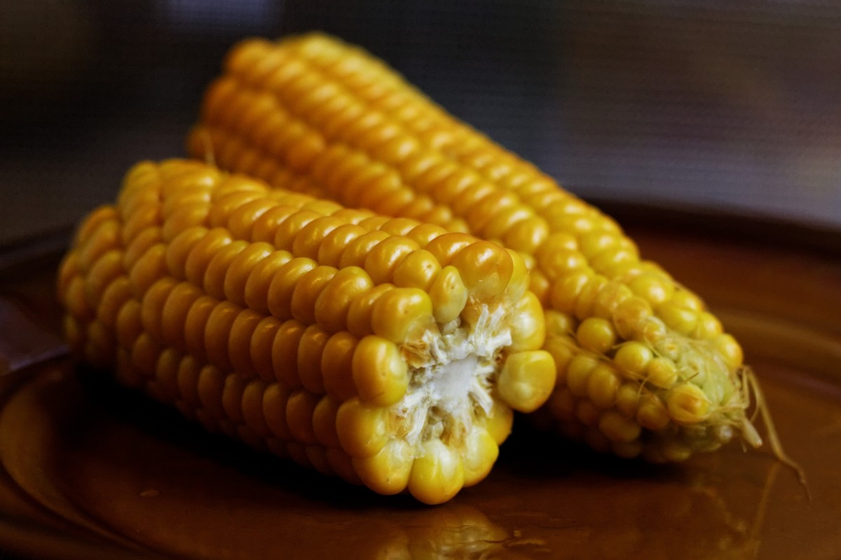 Archeologists believe that corn originated in the Tehuacan Valley of Mexico.