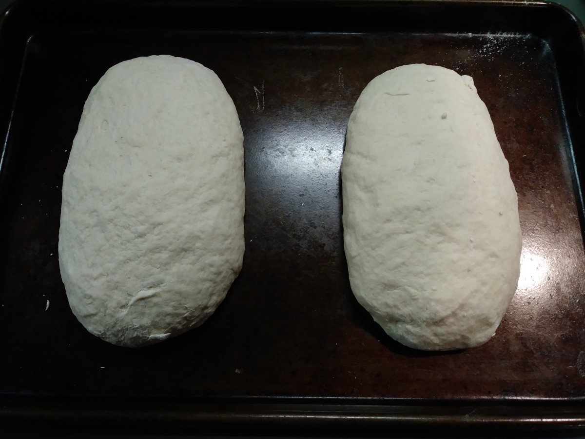 Sourdough loaves, ready for the oven.