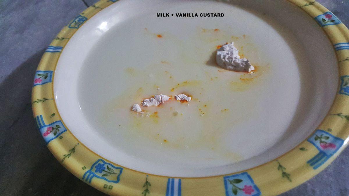 Milk and vanilla custard