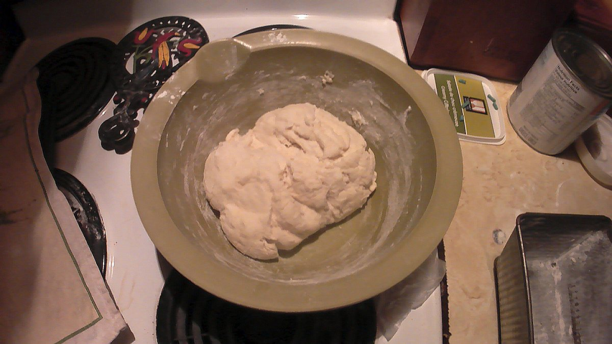 Bread dough before first rising.