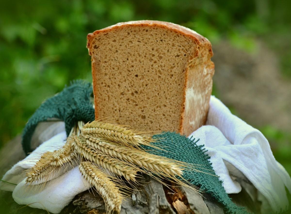 exploring-whole-grains