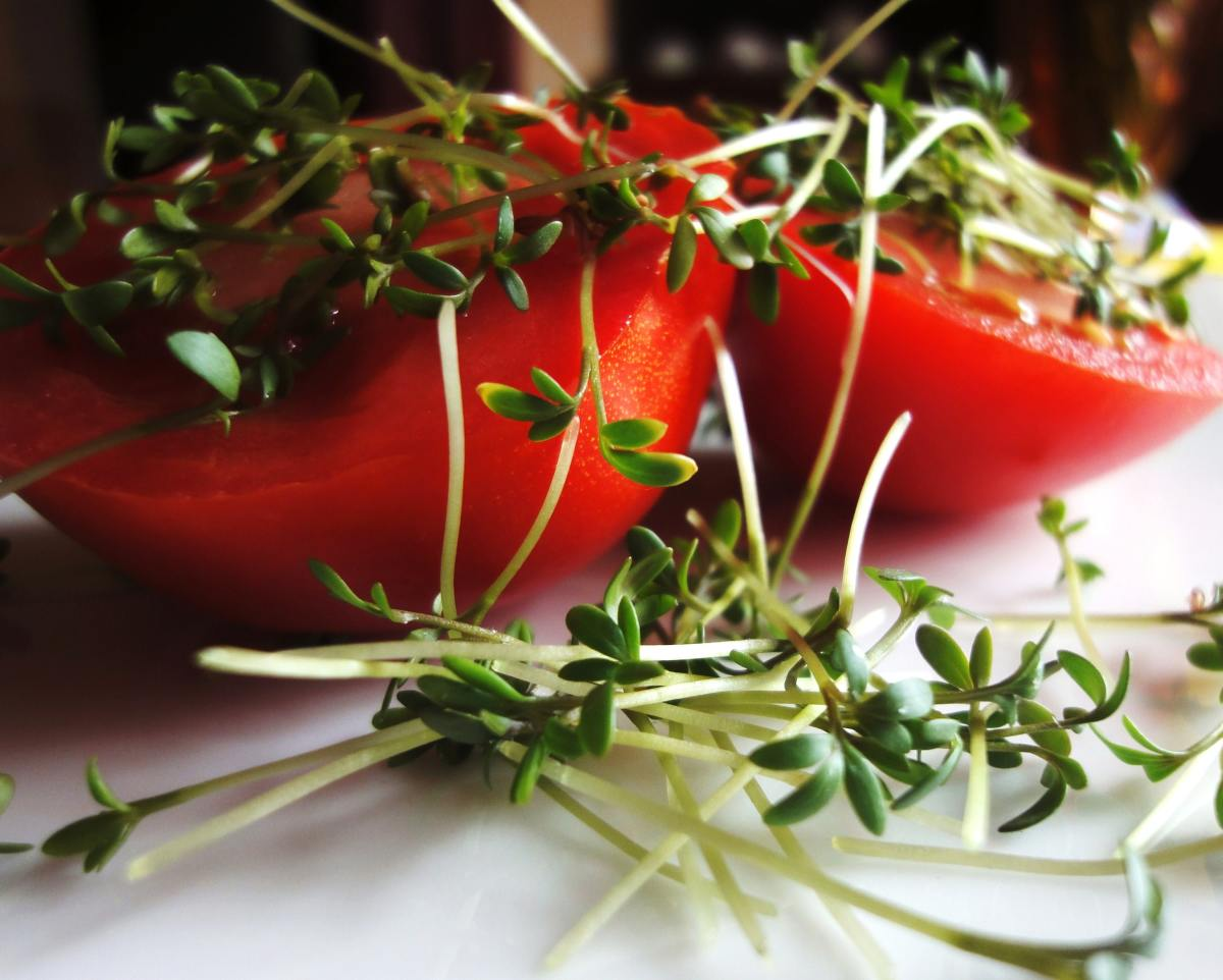 Fresh herbs and tomatoes.