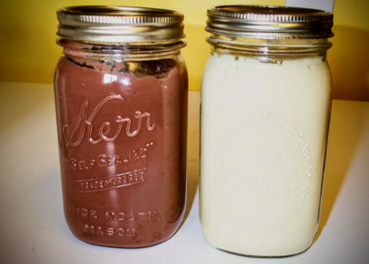 On the left is a dark chocolate variation using goat's milk, and flour as a thickener (I ran out of cornstarch!). On the right is traditional vanilla.