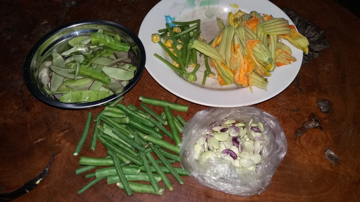 Some of the ingredients for this Ilocano recipe.