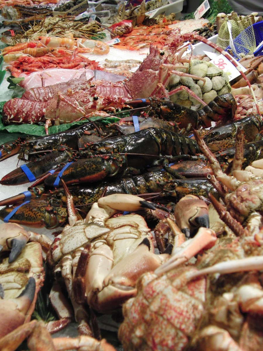 Crabs, lobsters, and other crustaceans