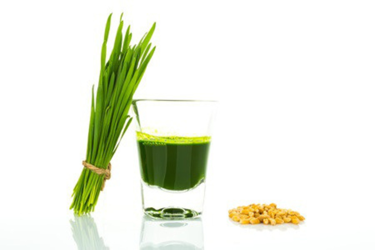 wheatgrass and a glass of green juice