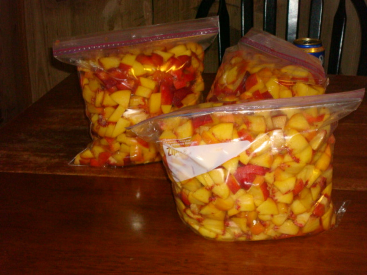 If you run out of time, at this point, peaches can be stored in the freezer until you are ready to process them.