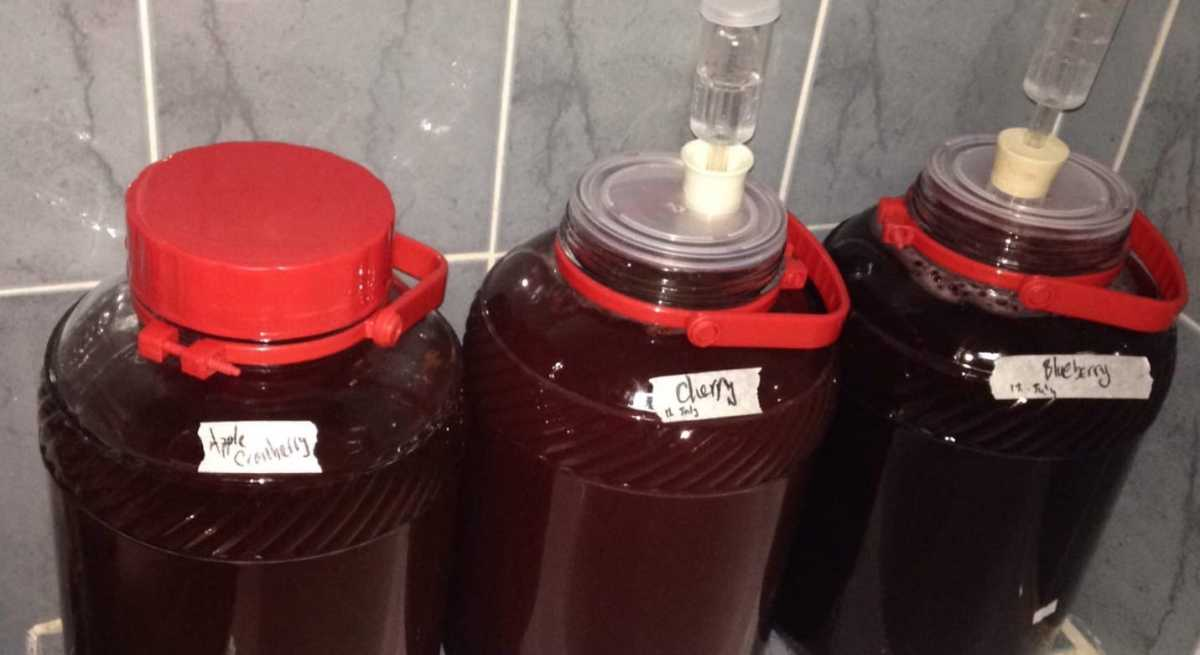 Left to right: apple and cranberry cider, cherry mead, blueberry mead