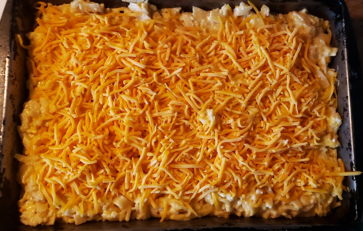Put noodles in a baking pan. Sprinkle extra shredded cheese on top. Bake for 25 minutes.