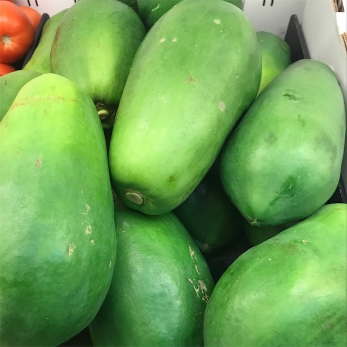 This is what green papayas look like.