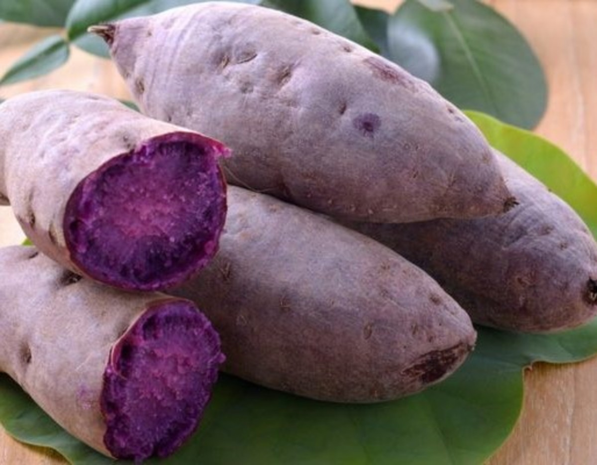 This is what purple yams look like.