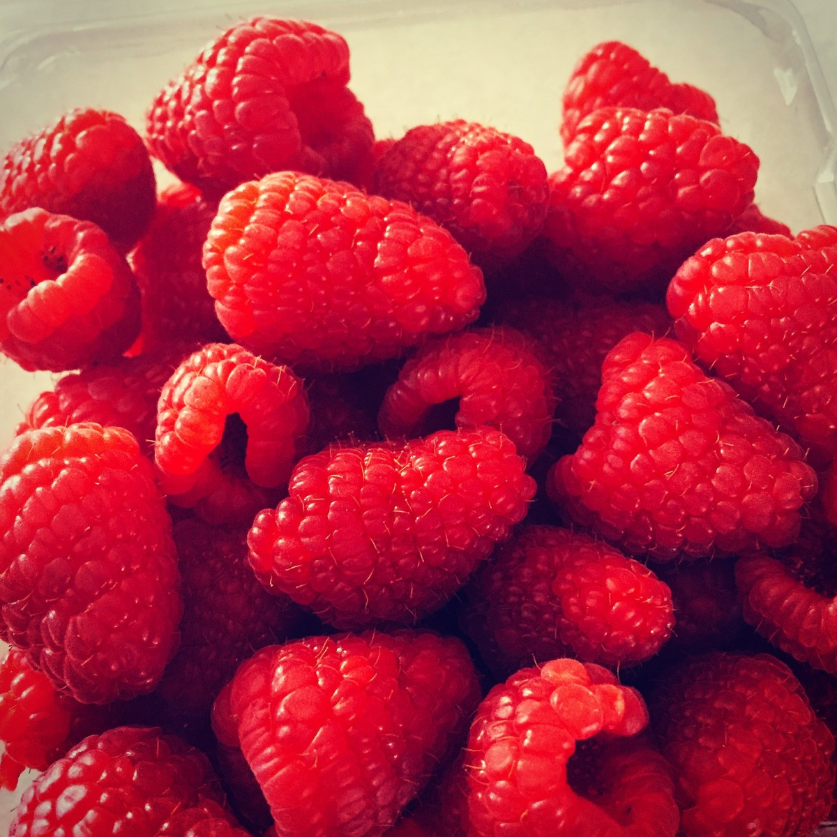 Fresh raspberries waiting to be used as cupcake garnishes.