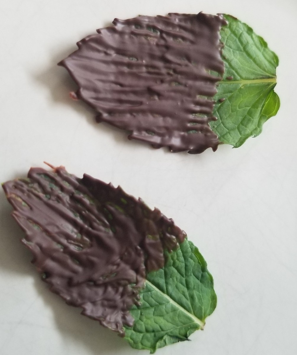 Try these chocolate mint leaves as a garnish for ice cream or dessert.