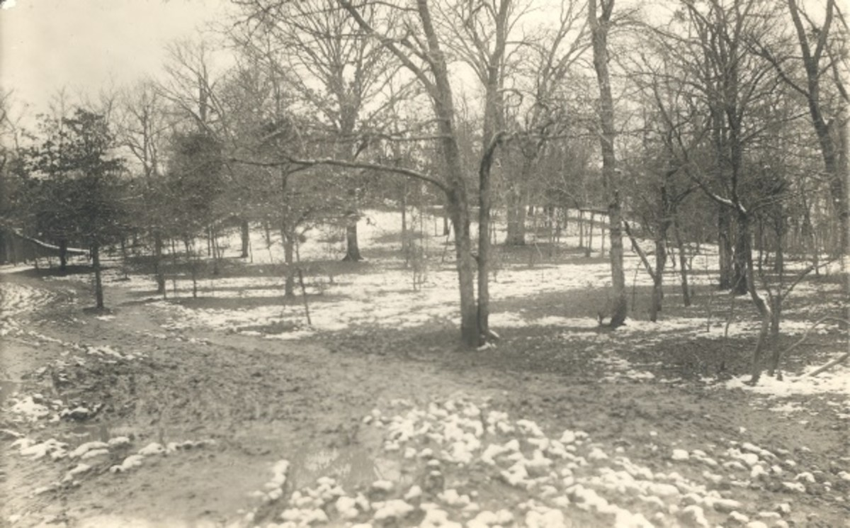 Fort Coffee Prairies, Dec. 1913