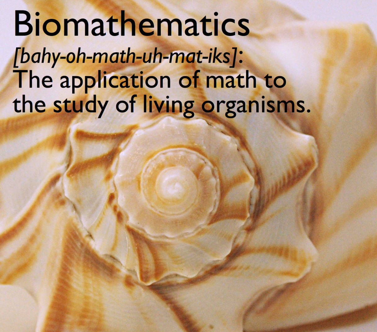 Biomathematics is the application of math to the study of living organisms.
