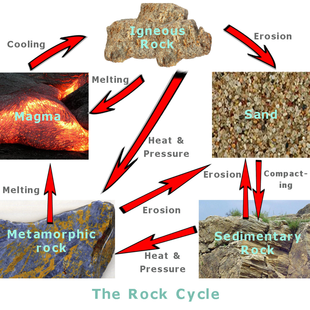 The rock cycle: how erosion, heat and pressure transform rocks.