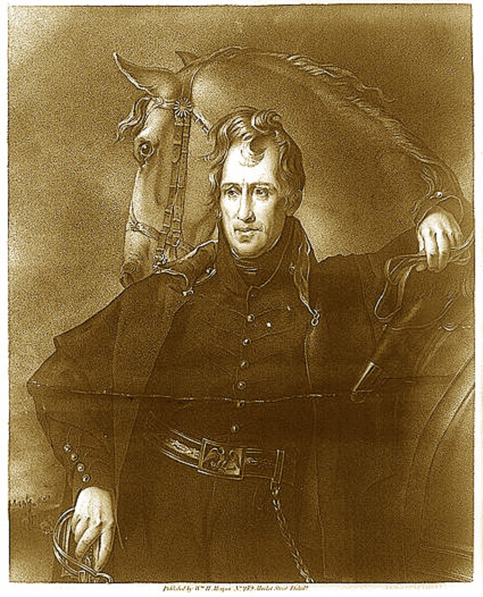 andrew jackson essay Essay on andrew jackson summary andrew jackson andrew jackson was a great man in many eyes i will discuss his high and low when he was in his presidency from 1829 -1837.
