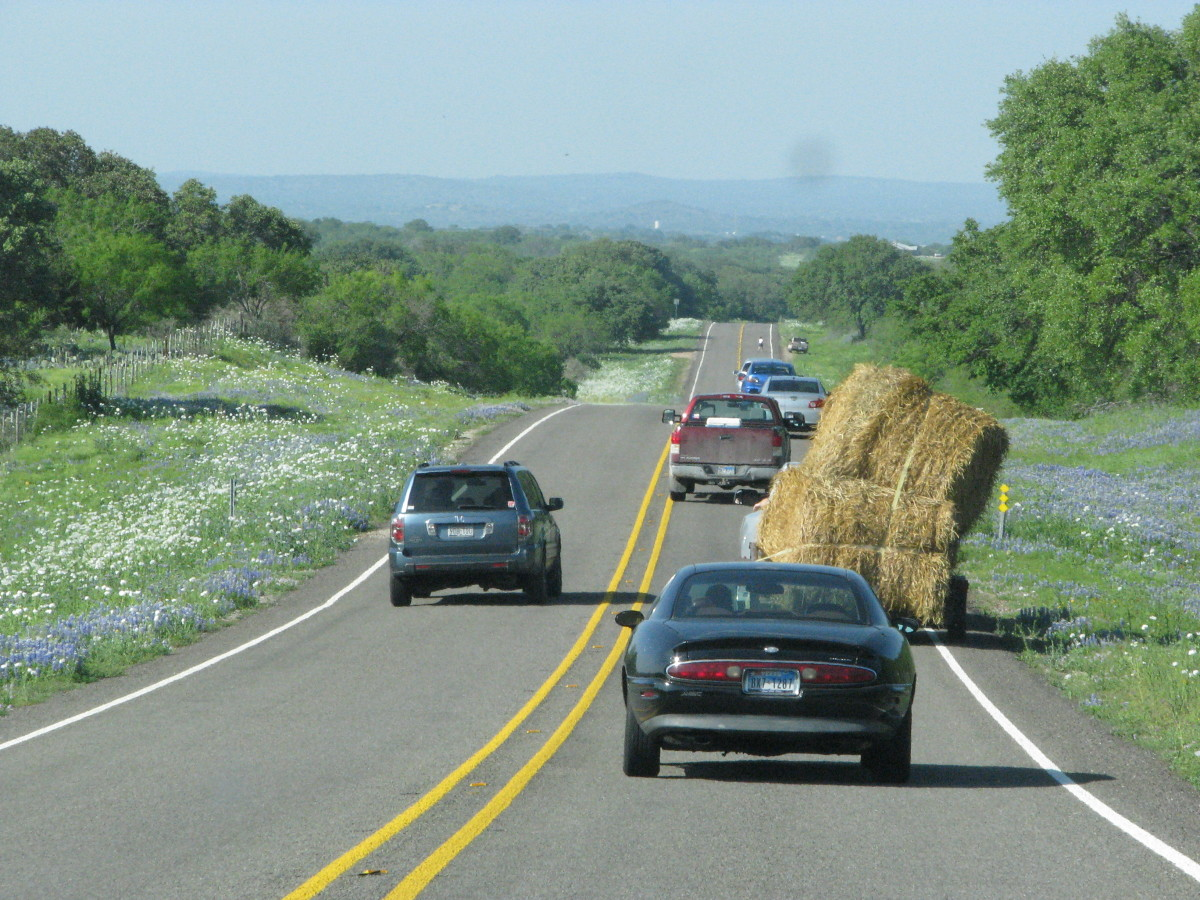 Hay on crowded road. How would you analyze this photo?