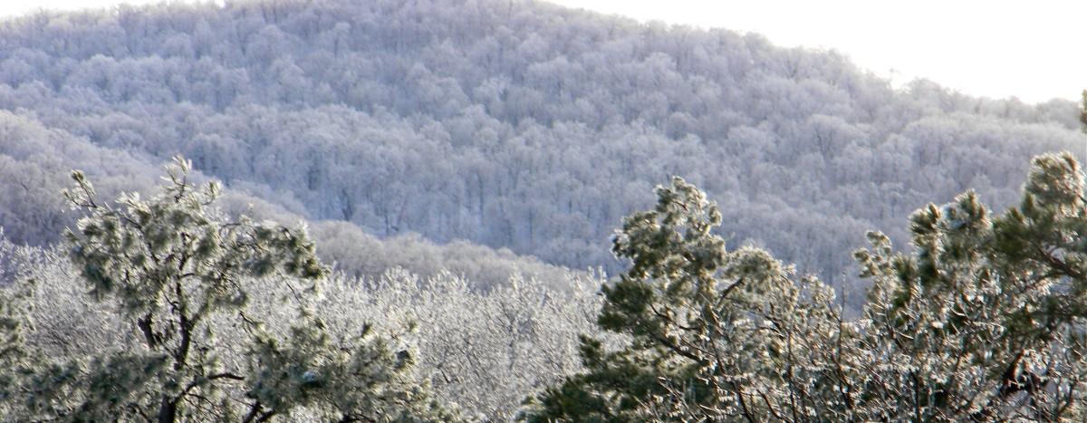 Cavanal Hill in Winter