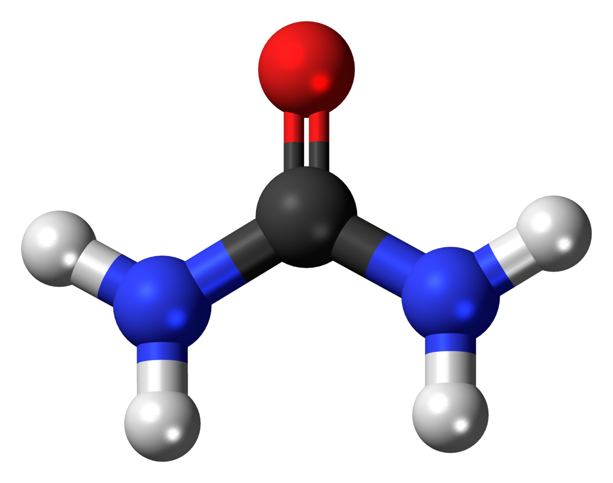 A ball-and-stick model of urea or carbamide