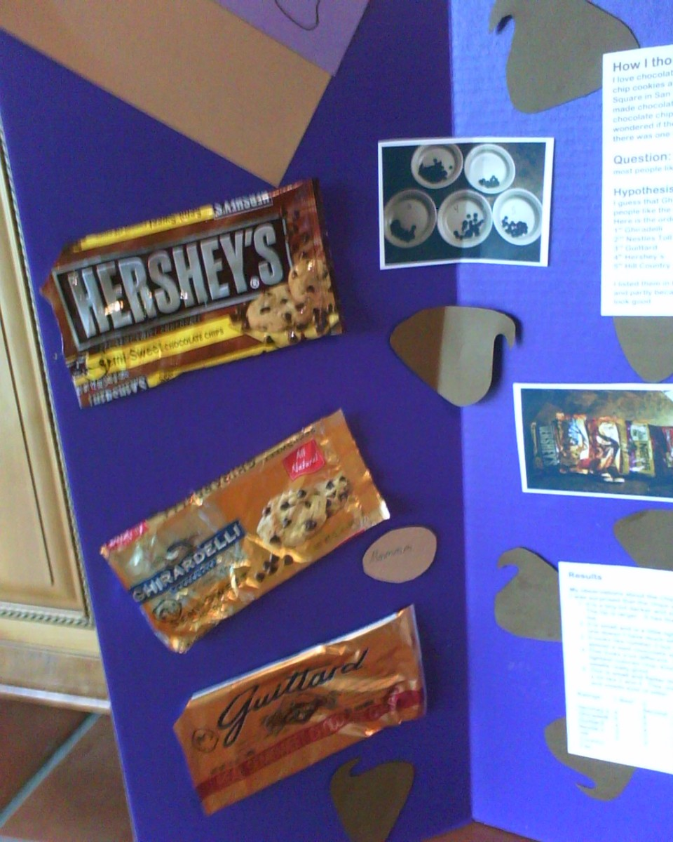Science Fair Project Which Chocolate Chip Tastes The Best