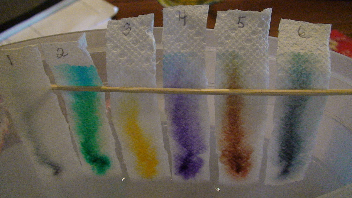 Place strips in a container filled with water so that the dots of marker do not touch the water and watch the colour move up the paper towel.