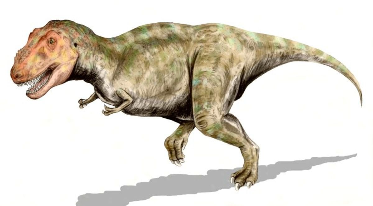 One of the most instantly recognisable dinosaurs, Tyrannosaurus Rex.