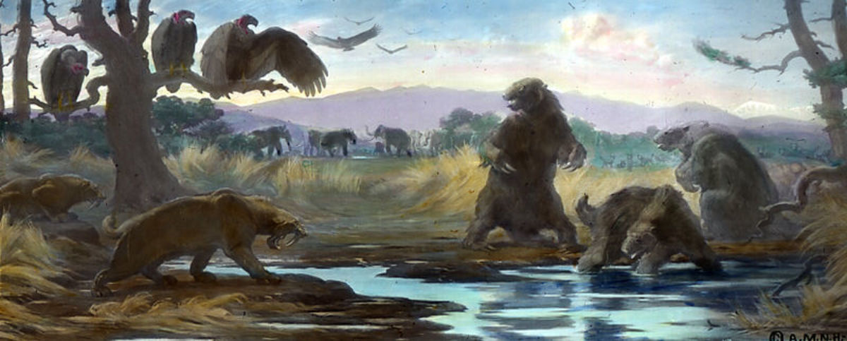 The La Brea Tar Pits as it may have looked in the time of smilodon.