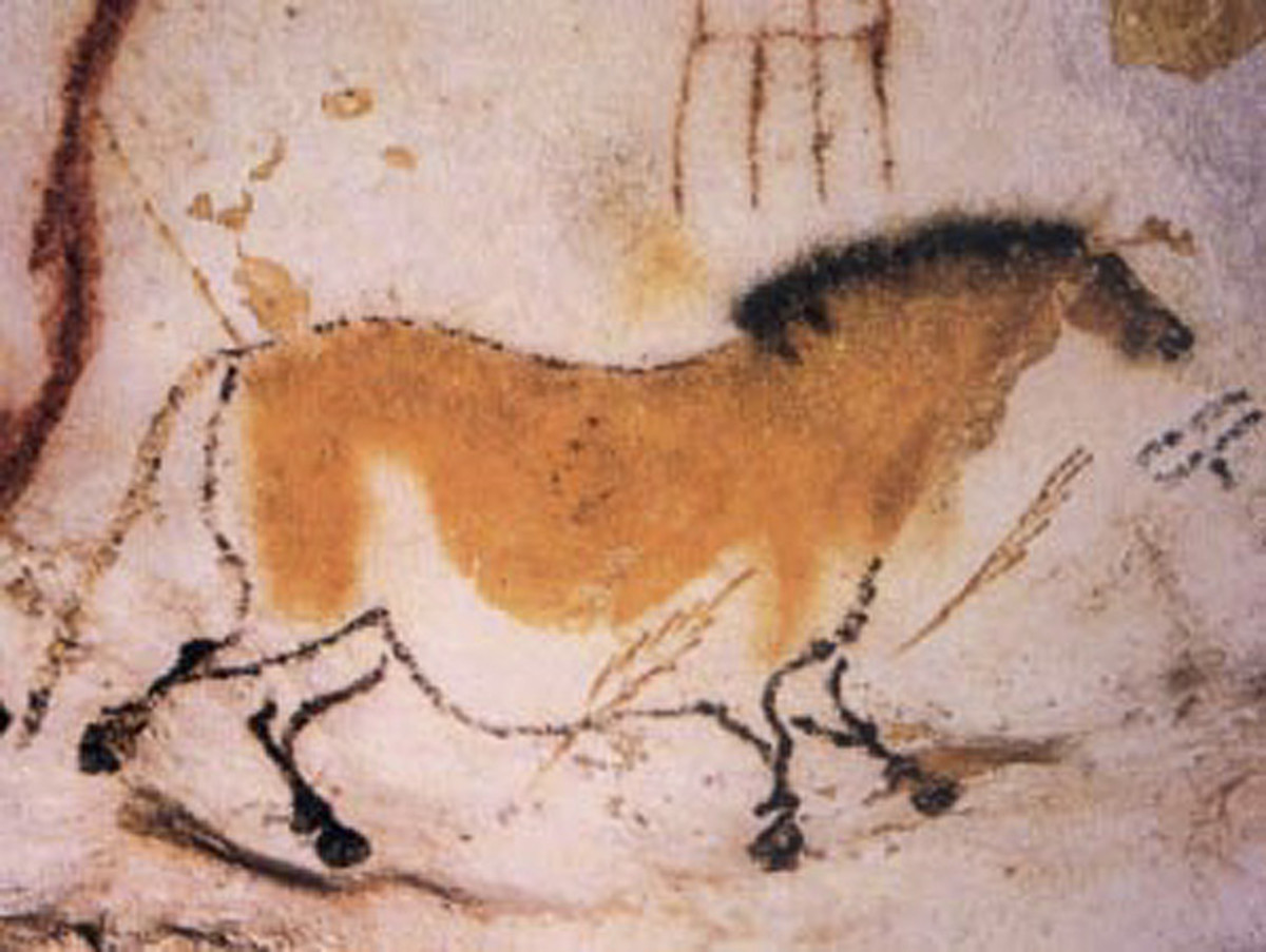 An image of a horse from the Lascaux Caves dating from around 17,000 years ago.