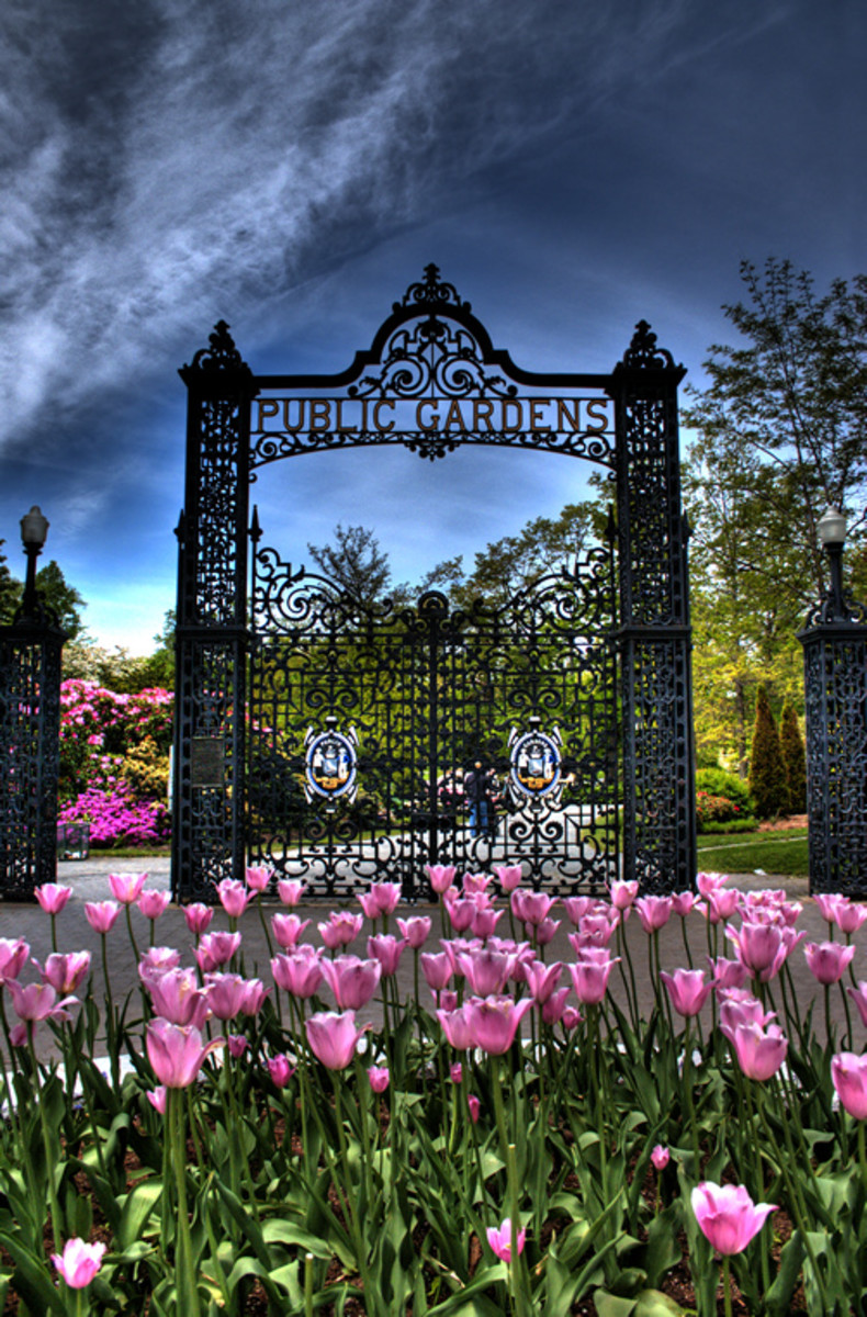 Beautiful Public Gardens in Halifax, Canada