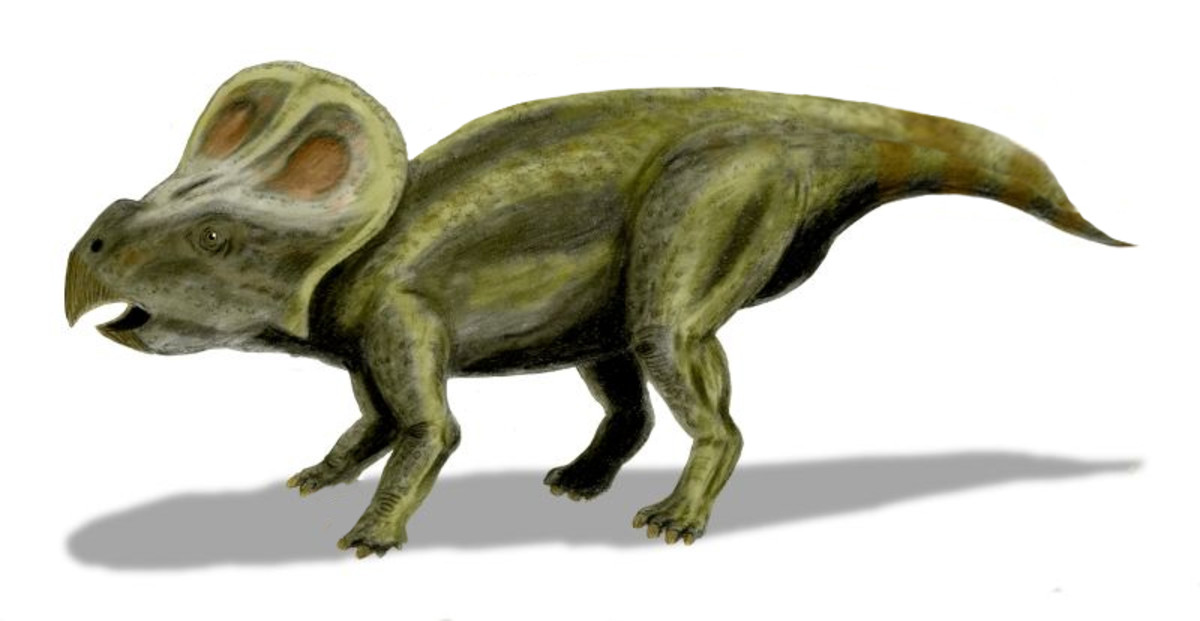 If large mammals did not exist, then would we humans be farming Protoceratops for their meat and eggs instead?