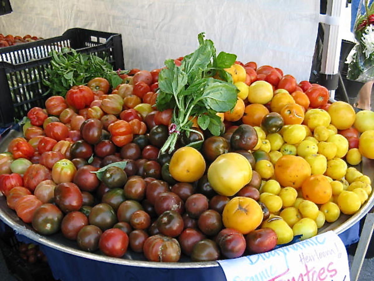 Tomatoes have a variety of colours.