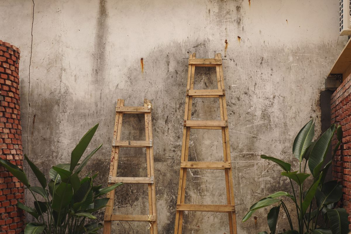 Is your ladder long? Sturdy?
