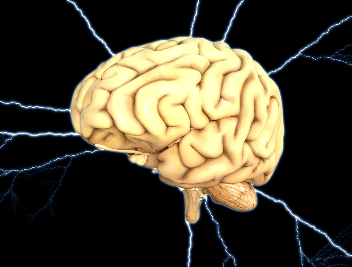 People with neurodegenerative diseases such as Alzheimer's or Parkinson's  often choose to leave their brains to Brain Banks.